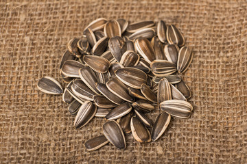 Sunflower seeds on a wooden background