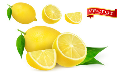 set of ripe juicy lemon whole and lobule realistic vector high detail. Lemon juice Fresh fruit, 3d vector icon.
