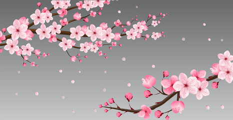 cherry blossom collection , greeting cards , seamless texture , japanese floral pattern Wall mural