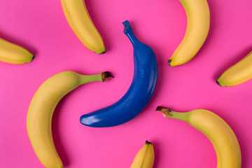 Top view of fresh yellow and blue bananas isolated on pink background.