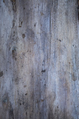 Wood Boards plank texture for your background