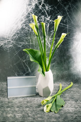 Geometry form vaze with calla flowers on grey background