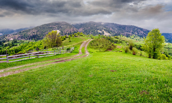 country road through rural area in mountains. beautiful springtime scenery on  cloudy day