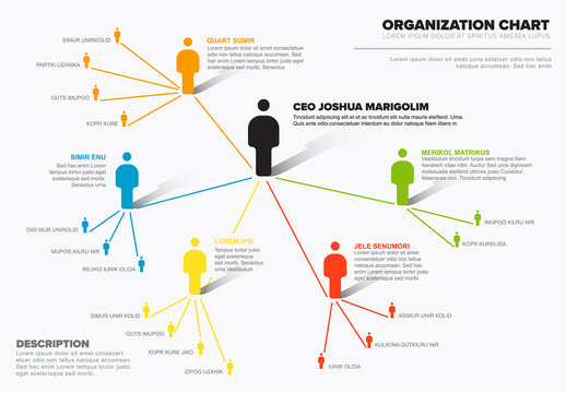 Company organization hierarchy schema diagram template