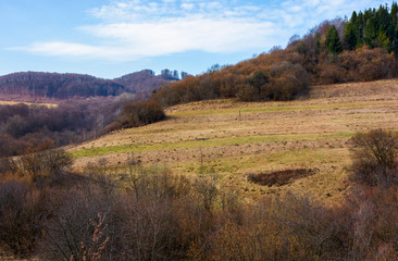 rural fields on mountain slopes in springtime. lovely countryside scenery