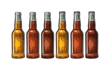 Open and close beer bottle. Vintage color vector engraving illustration.