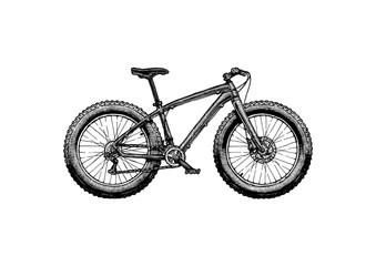 illustration of fat bike