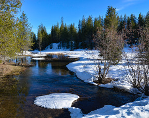 Colorful creek with snow bank in forest