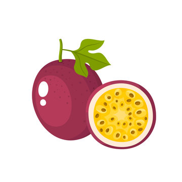 Bright vector illustration of fresh passion fruit isolated on white