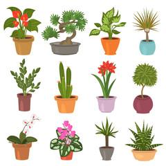 Home flower flat icon set