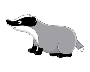 Funny cartoon badger. Vector illustration.  Isolated on white ba