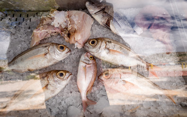 Fresh fish at the market in the freezer. Fresh fish on ice at the market fishery