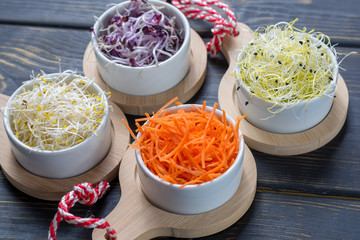 Ingredients for healthy salad. Raw fresh young organic sprouts of leek, alfalfa, red reddish and carrot in bowls close up