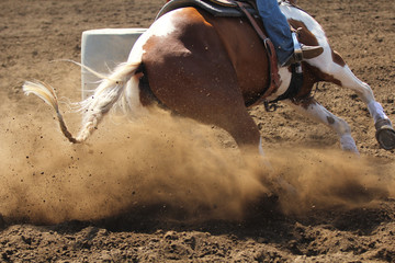 A barrel racing horse slides around the barrel kicking up dirt and dust.