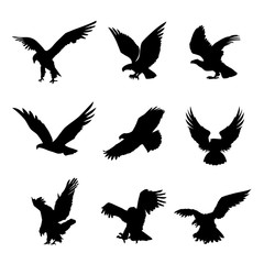 Eagle Falcon Bird Hawk Animal Silhouette Black Icon Flat Design Element Vector Illustration
