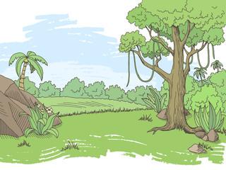 Jungle forest graphic color landscape sketch illustration vector
