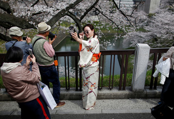 A kimono-clad woman takes selfie photo at the Chidorigafuchi moat, as visitors enjoy fully bloomed cherry blossoms, during spring season in Tokyo