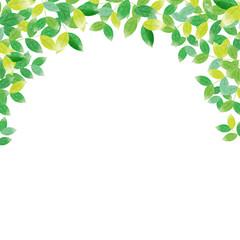 新緑 水彩フレーム