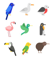 Exotic birds in flat style. Stylized pictures set