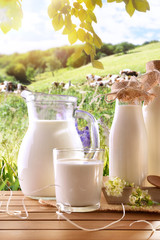 Glass containers filled with cow milk in a meadow vertical