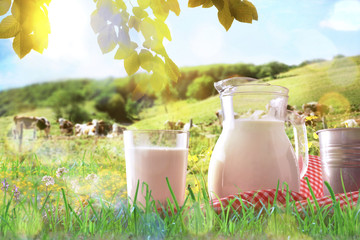 Glass containers filled with milk on tablecloth in the grass