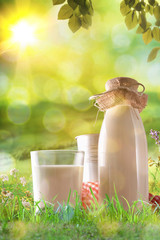 Organic milk on grass in a sunny meadow vertical