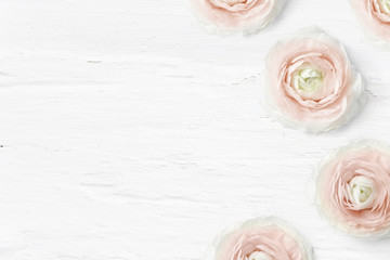 Styled stock photo. Feminine desktop mockup with buttercup flowers, Ranunculus, empty space and shabby white background. Top view. Picture for blog or social media.