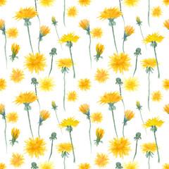 Watercolor dandelion seamless pattern