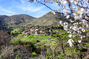 Beautiful spring landscape, a village Lazanias in the mountains of Cyprus, blue sky, green hills and blossoming almond