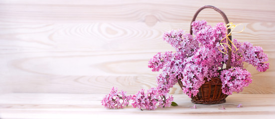 Foto auf Leinwand Flieder Spring lilac in basket isolated .