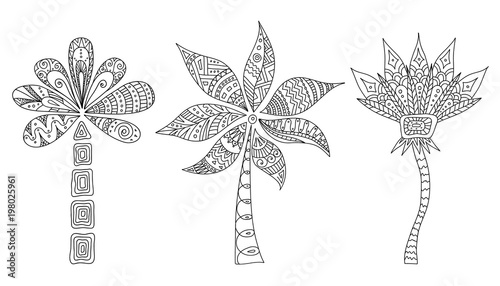 Set Of Doodle Palms Vector Outline Of Trees Tribal Style