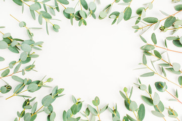 Frame of eucalyptus branch pattern with space for text on white background. Flat lay, top view hero header concept.