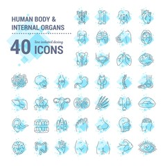 Vector graphic set. Icons in flat, contour, thin, minimal and linear design. Study and structure of person internal organs and a body part. Concept illustration for Web site. Sign, symbol, element.