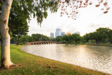 Landscape plublic park and lake view in Bangkok