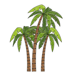Tree palms cartoons vector illustration graphic design