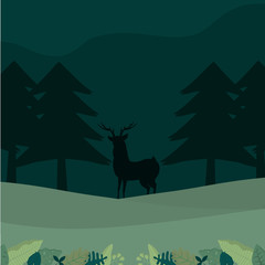 Deer silhouette in forest