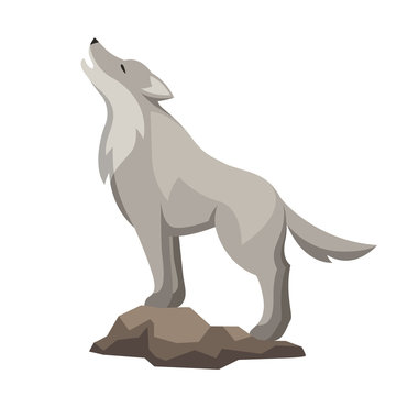 Stylized illustration of wolf. Woodland forest animal on white background