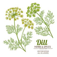 dill plant vector set