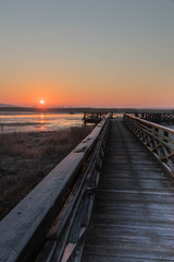 the sun rises red over marshlands and swamps and a wooden bridge with a railing and birds resting on the water and among the reeds