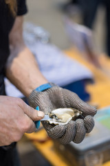 Hand in metal cut resistant glove is opening an oyster with a special knife on a fish market.