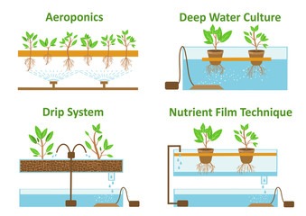Set of aeroponic and hydroponic plant growth systems.Color vector illustration