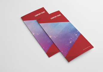 Trifold Brochure with Red Elements