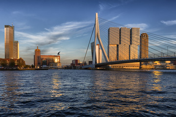Travel Concepts, Ideas and Destinations.Picturesque View of Erasmus Bridge in Rotterdan in The Netherlands