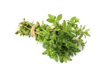 Sprigs of thyme in a bundle isolated.