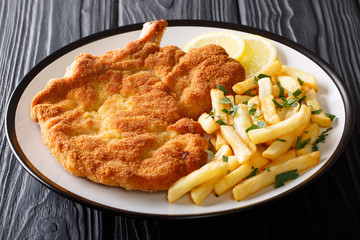 Fried veal cutlet Milanese with lemon and French fries close-up on a plate. Horizontal