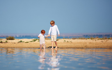 cute brothers, young kids walking along the lake in shallow water in the summer morning