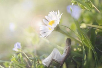 surreal moment of a woman sitting in the shade of a gigantic daisy in a green meadow