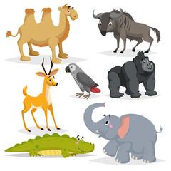African animals cartoon set. Gorilla monkey, grey parrot, elephant, gazelle antelope, crocodile, bactrian camel and wildebeest. Zoo wildlife collection. Vector illustrations.