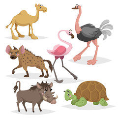 African animals cartoon set. Camel, big african turtle, flamingo, hyena, warthog and ostrich. Zoo wildlife collection. Vector illustrations isolated on white background.
