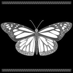 butterfly in zenart style, white butterfly on black background